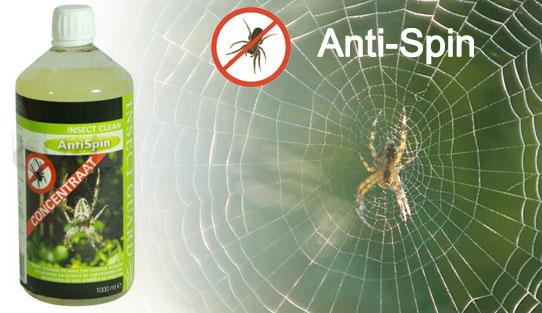 Met onze anti spin behandeling bieden we de beste oplossing tegen spinnenoverlast.