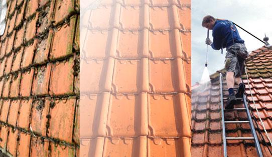 dakreiniging, dakpannen reinigen